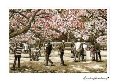 Postkarten Aschaffenburg 5